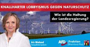 Der Naturschutz ist durch die Forderungen der Windlobby in Gefahr – Heimat schätzen und schützen!